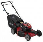self-propelled lawn mower CRAFTSMAN 37064 Photo, description
