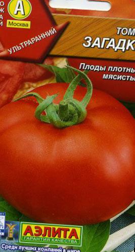 Сорт томата загадка описание
